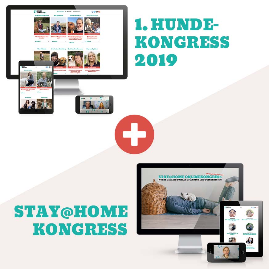 Kongresspaket Bundle 2019 + Stay@Home