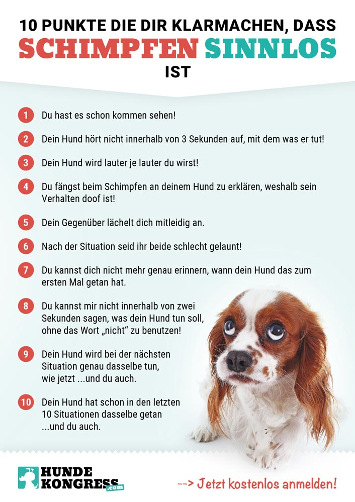 Plakat: Schimpfen mit dem Hund