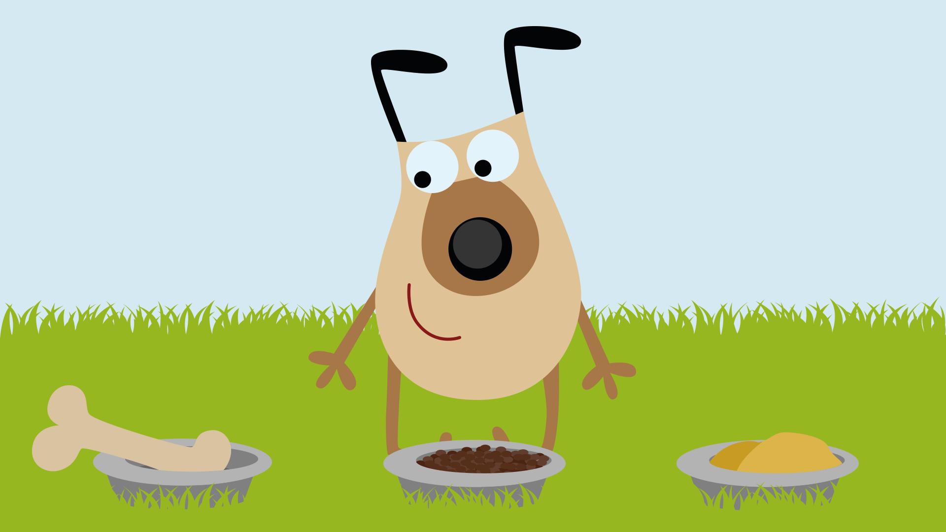 Was frisst dein Hund am liebsten?